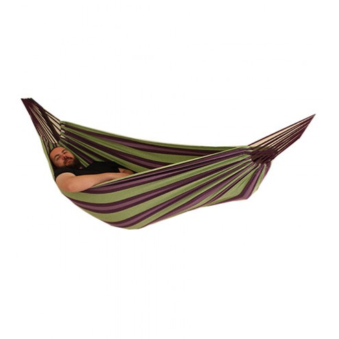 Double Hammock in Purple and Green isolated